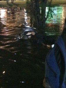 17-летний парень погиб на затопленной улице Краснодара от удара током (фото – «Типичный Краснодар», ВКонтакте)